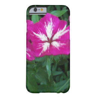 Trío del Phlox de las rosas fuertes Funda Barely There iPhone 6