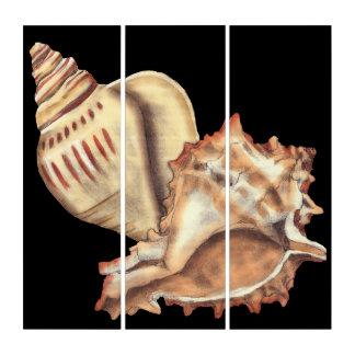 Tríptico Cáscaras artísticas de la concha