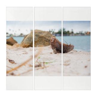 Tríptico Cocos en la Florida