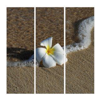 Tríptico Impresión del océano de la arena del Plumeria