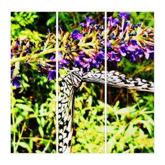 Tríptico Mundo de la mariposa