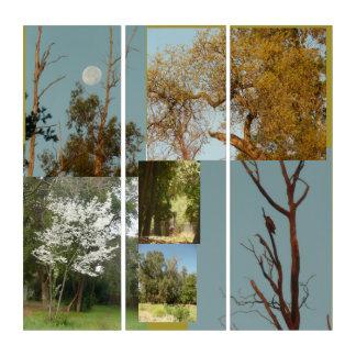 Tríptico Parque de Thousand Oaks en San Jose, California