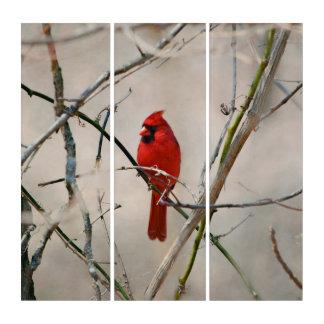Tríptico Un pájaro cardinal rojo en una rama en las maderas