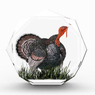 Trofeo Acrílico Acción de gracias Turquía