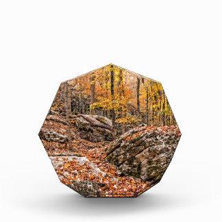 Trofeo Acrílico Bosque hermoso del otoño