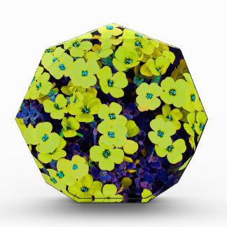 Trofeo Acrílico Pequeñas flores amarillas