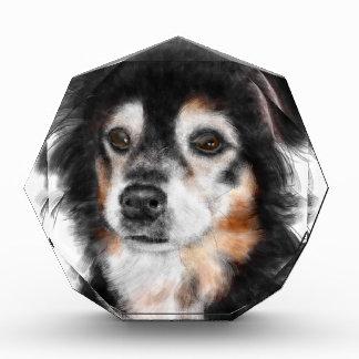 Trofeo Acrílico Perro blanco y negro