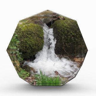 Trofeo Acrílico Poca cascada por las rocas cubiertas de musgo en