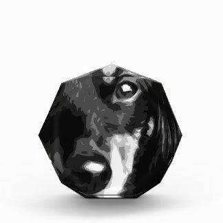 Trofeo Acrílico Un Dachshund miniatura blanco y negro