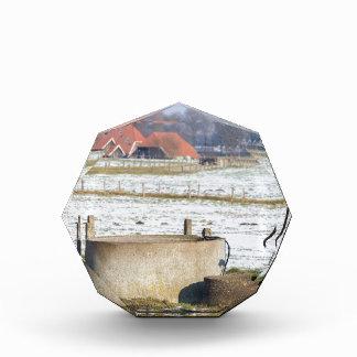 Trofeo Bomba de agua y bien en paisaje de la nieve del