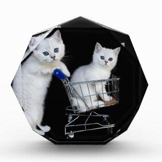 Trofeo Dos gatitos blancos con el carro de la compra en