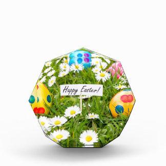 Trofeo Huevos de Pascua pintados en hierba con las