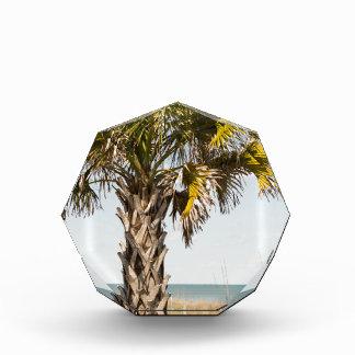 Trofeo Palmeras en paseo marítimo de la costa este de