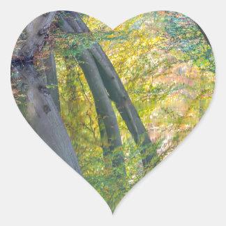 Troncos de árbol de la caída con la reflexión en pegatina en forma de corazón