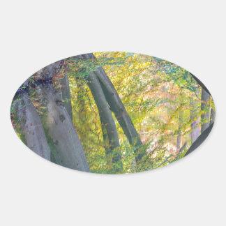 Troncos de árbol de la caída con la reflexión en pegatina ovalada