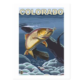 Trucha de asesino FishingColorado Tarjeta Postal