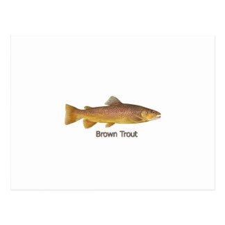 Trucha de Brown (titulada) Postal
