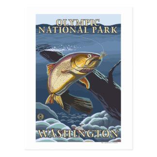 Trucha que pesca la sección representativa 4 tarjetas postales
