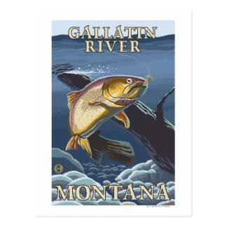 Trucha que pesca la sección representativa - río d postal