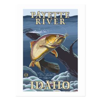 Trucha que pesca la sección representativa - río d tarjeta postal