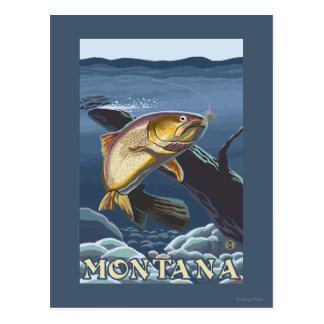 Trucha que pesca la sección representativa - tarjetas postales