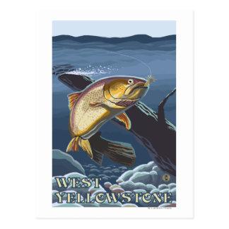 Trucha que pesca la sección representativa - Yello Tarjetas Postales