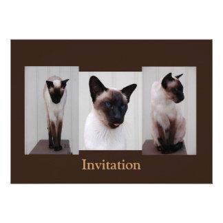 Tryptich de Inoe del gato Comunicados Personalizados