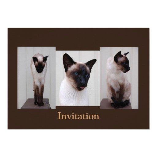 """Tryptich de """"Inoe"""" del gato Comunicados Personalizados"""