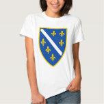 ts.png camiseta