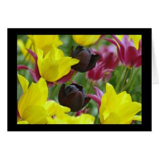 Tulipán negro tarjeta de felicitación