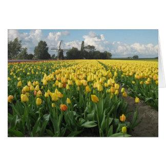 Tulipanes amarillos en un campo y molino de viento tarjeta