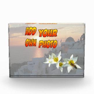 Tulipanes blancos con el bloque de la foto de la