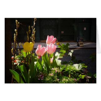 Tulipanes de la primavera contra una calle en Soho Felicitacion