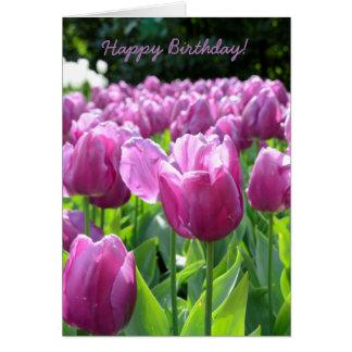 Tulipanes de la púrpura de la tarjeta de