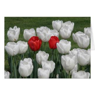 Tulipanes de la tarjeta del día de San Valentín