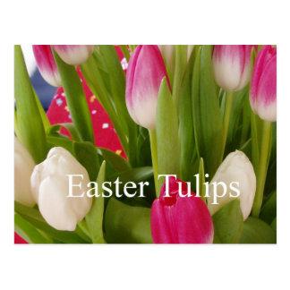 Tulipanes de Pascua Postal