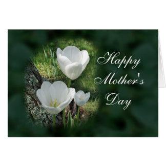 Tulipanes felices del blanco del día de madre tarjeta de felicitación