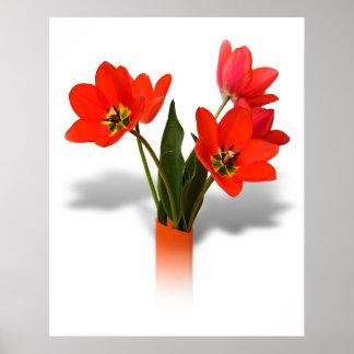 Tulipanes rojos en florero póster