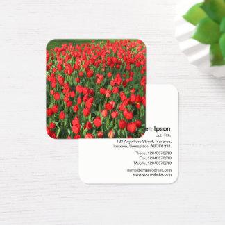 Tulipanes rojos tarjeta de visita cuadrada