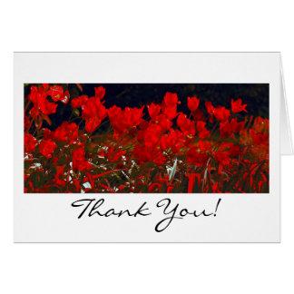 Tulipanes rojos vibrantes, gracias tarjeta de