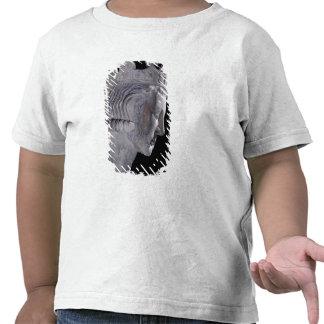"""Tumba de Pepin """"el cortocircuito"""", rey de las Camisetas"""