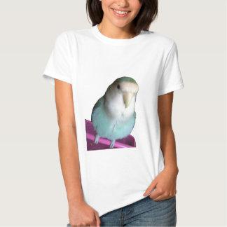 Turquesa de la aguamarina del agapornis de la camisetas
