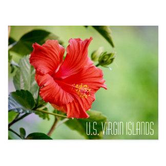 U.S. Postal de la flor del hibisco de las Islas
