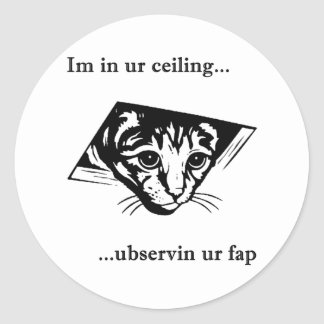 Ubservin u del gato del techo… pegatina redonda