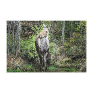 Un alce en el bosque lienzo