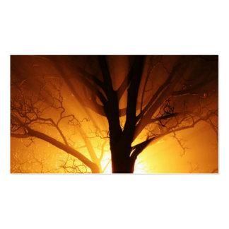 Un árbol desnudo en la puesta del sol tarjetas de visita