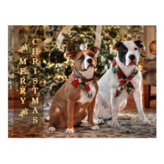 Un Bubba y navidad de Kensie Postal