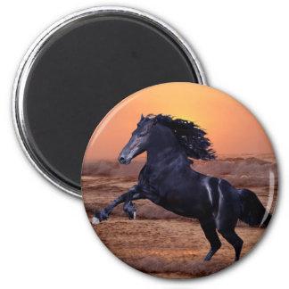 Un caballo del océano de la puesta del sol imán para frigorifico
