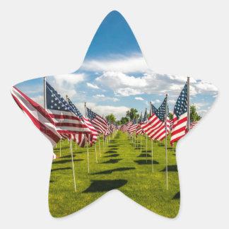 Un campo de banderas americanas en la pegatina en forma de estrella