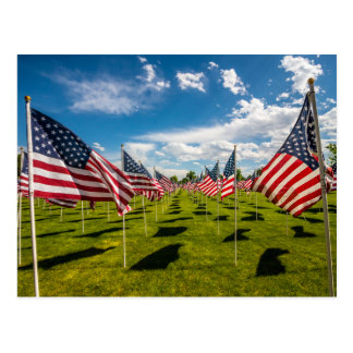 Un campo de banderas americanas en la postal